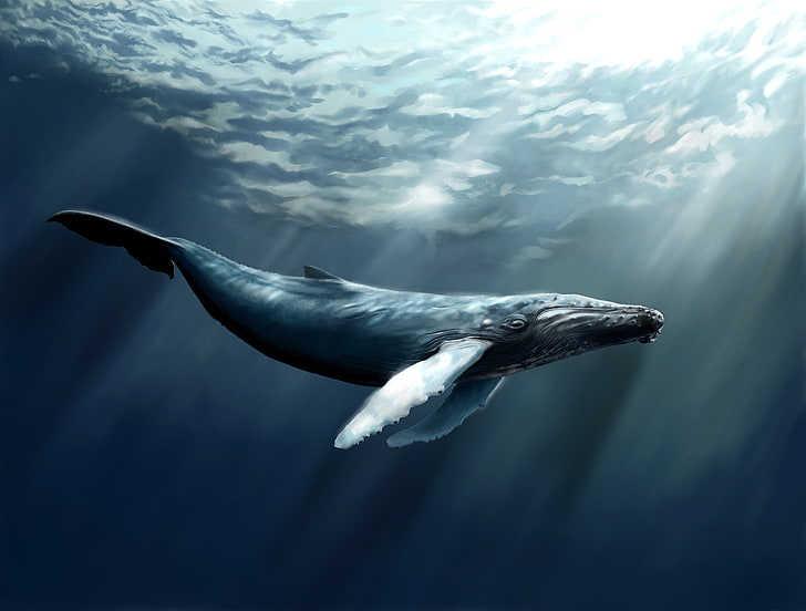 la ballena gris